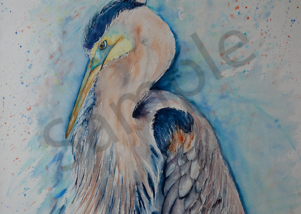 Blue the Heron