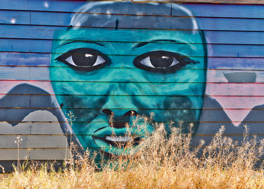 Green Face Photography Art   frednewmanphotography