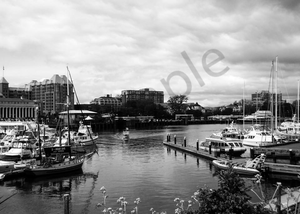Victoria Harbour Photography Art | Sage & Balm Photography