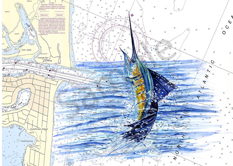 Off The Charts Sailfish Art | ColleenNashBecht