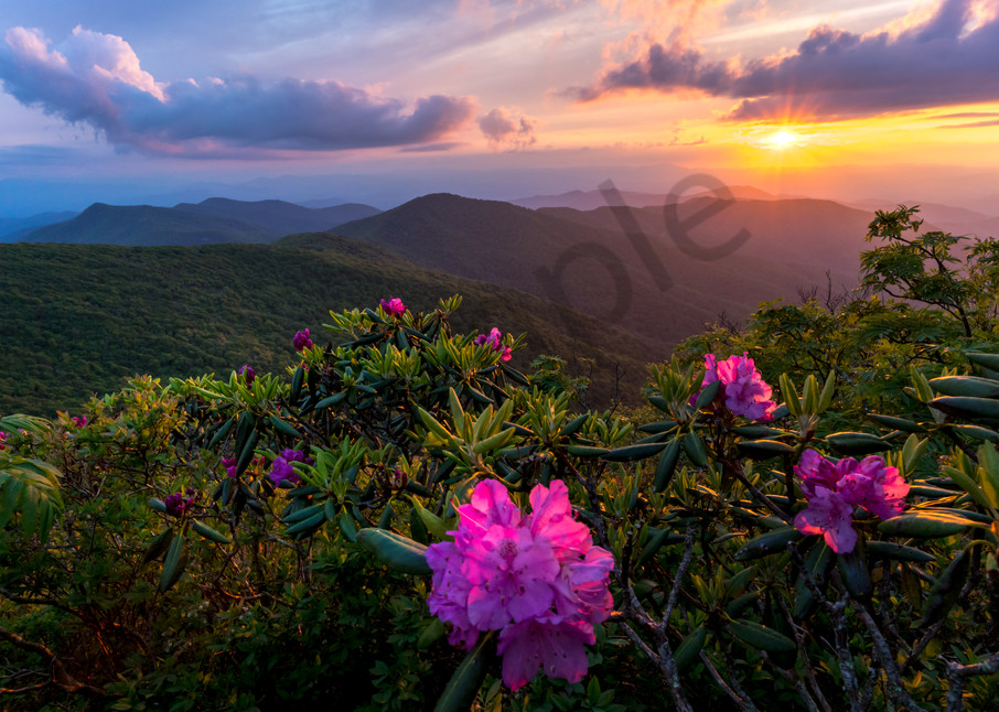 Spring in the Blue Ridge Mountains Photograph for Sale as Fine Art
