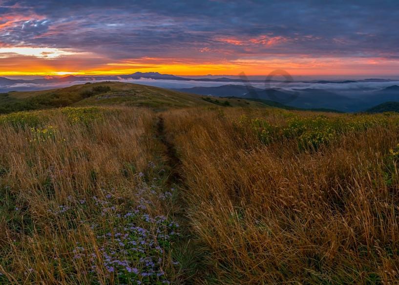 Blue Ridge Mountain Hike Photograph for Sale as Fine Art