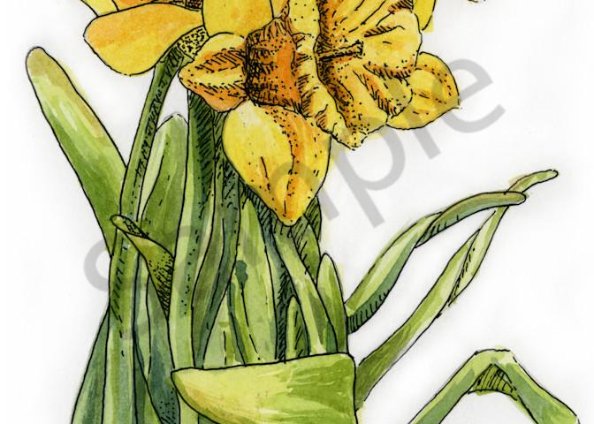 March   Daffodil Art | Geoffrey Butz Art & Design Inc