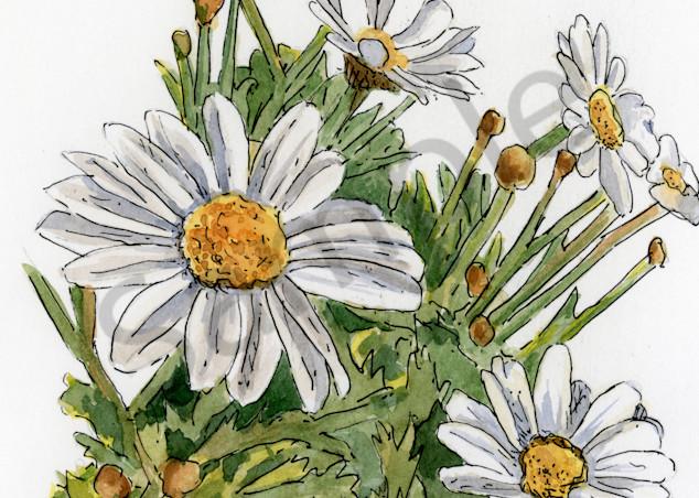 April Daisy Art | Geoffrey Butz Art & Design Inc