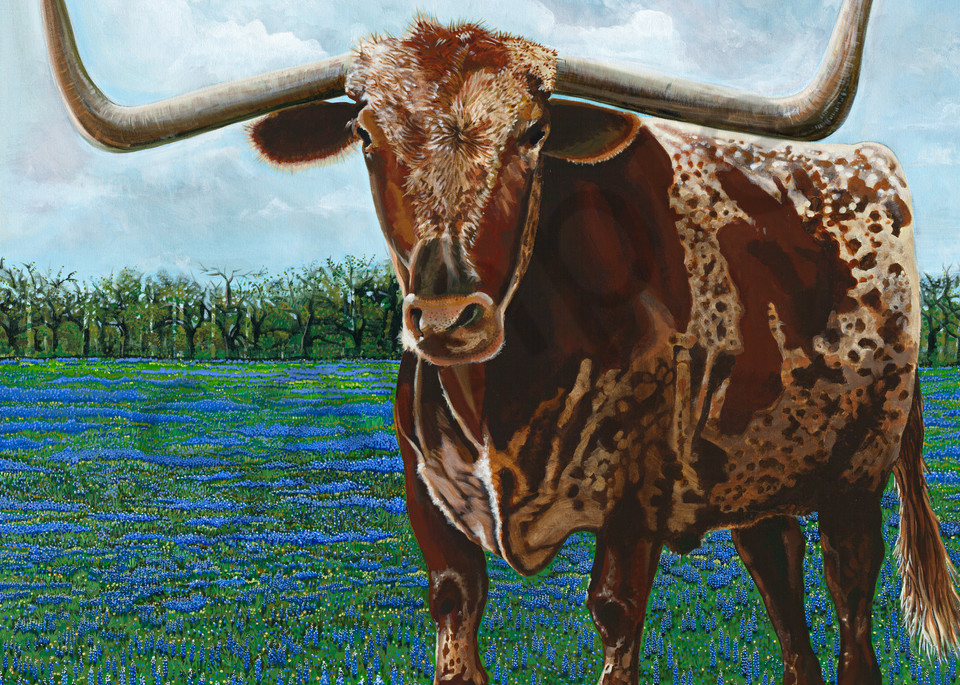 Longhorn and bluebonnet paintings by John R. Lowery for sale as art prints