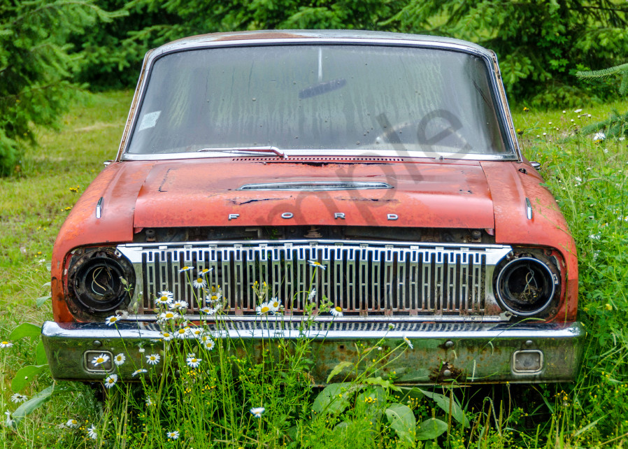 old red ford in grass field with flowers
