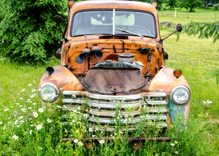 Rustinc old orange truck in green field with flowers