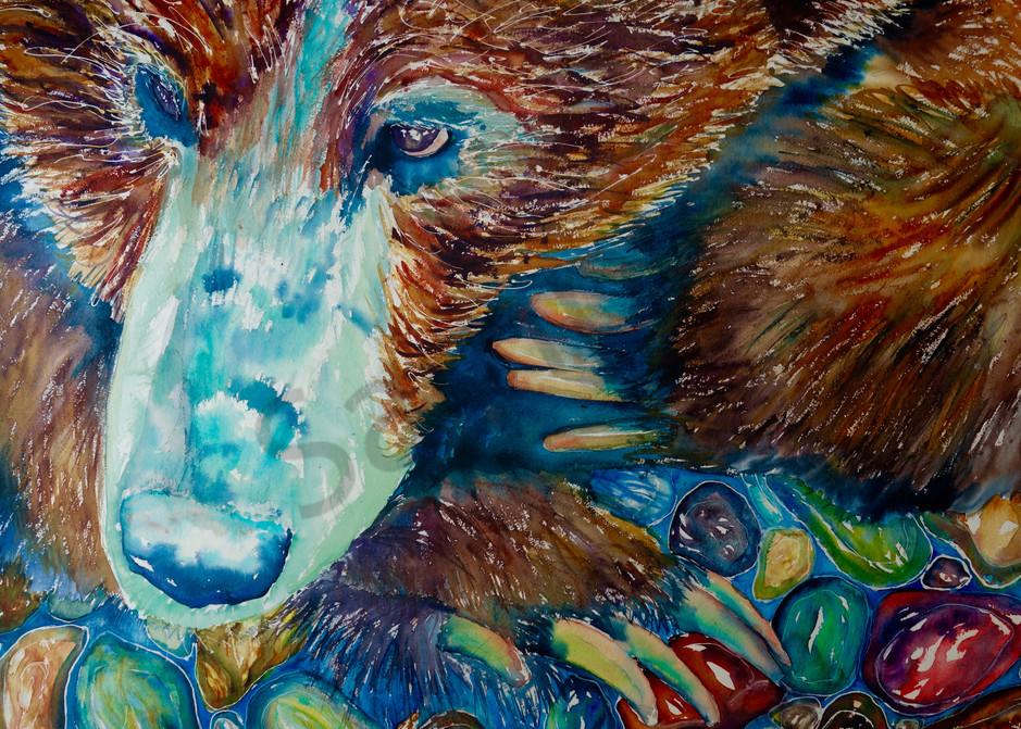 Bruce the Brown Bear and his Treasure River Rocks