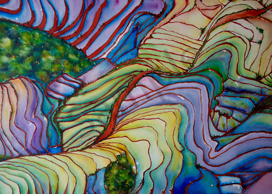 Rice Paddy Dreamscape no. 3