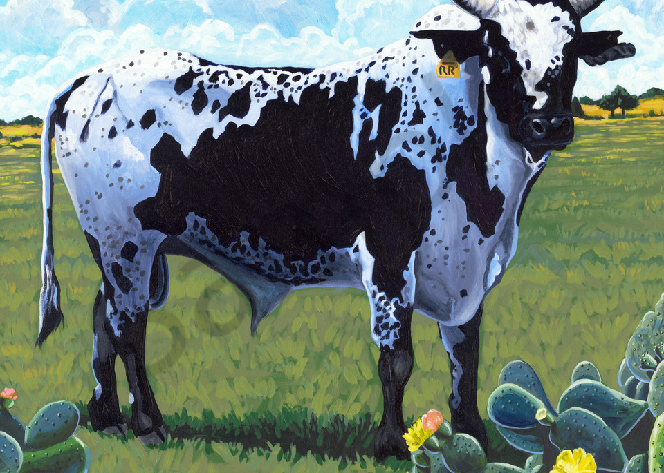 Painting of a rodeo bull for sale as art prints.