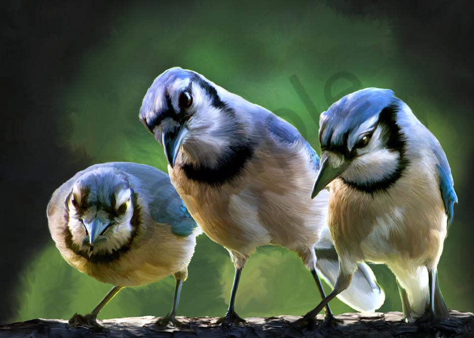 three cardinals