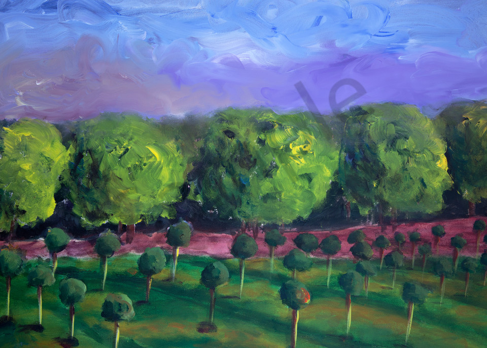 Acrylic painting of Napa Grove. Art by Susan Kraft