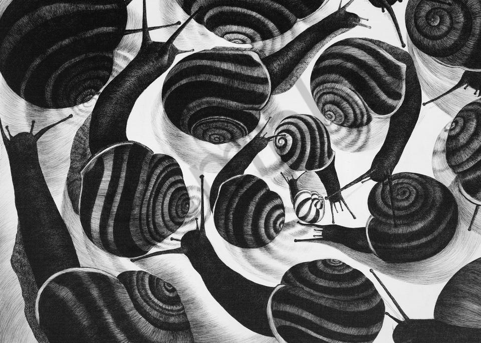 Fibonacci S Dream Art | kristinahutchmatthews