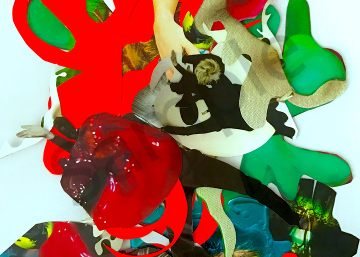Odeta Xheka Visuals   Colorful biomorphic collage print on canvas