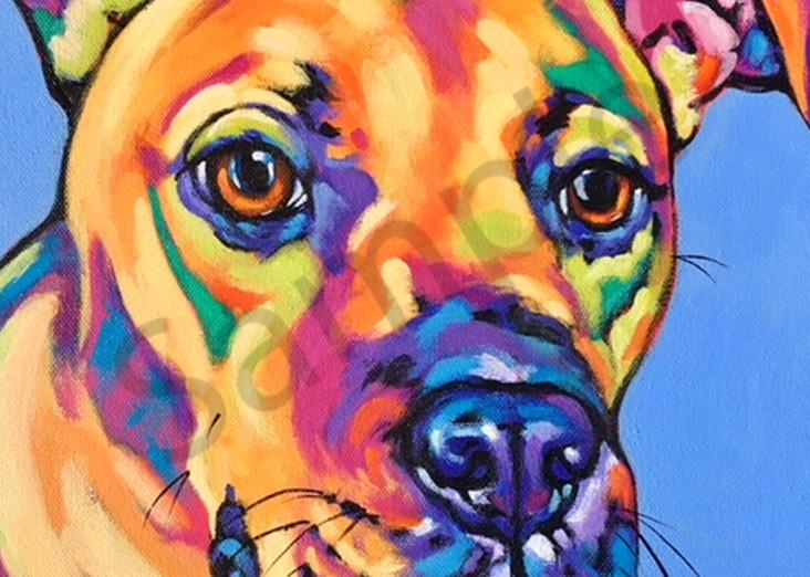 Sofie Art | Sally C. Evans Fine Art