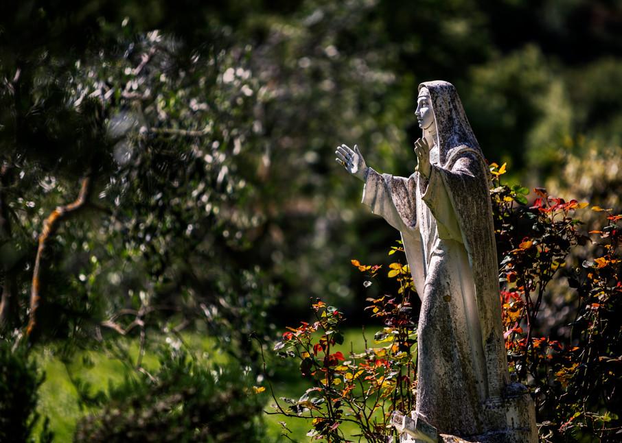 Church Gardens 8929 Photography Art   Bridget Karam Photography