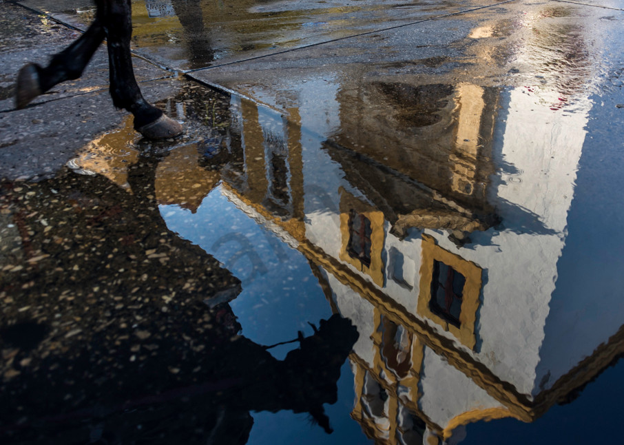 Cartagena church and horse reflected in water