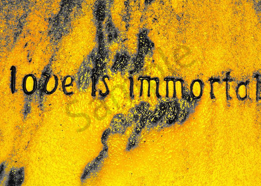 Love Is Immortal  Art | toddbreitling