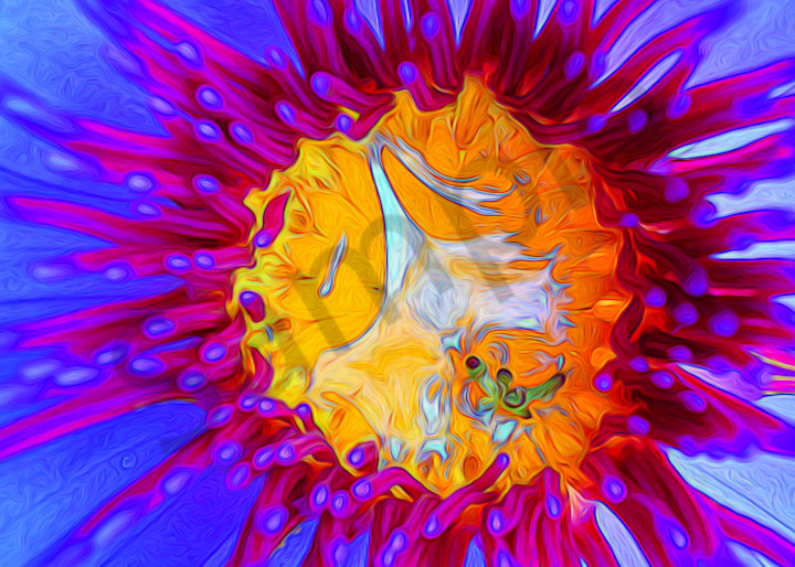 Water Flower|Fine Art Photography by Todd Breitling|Flowers|Todd Breitling Art|