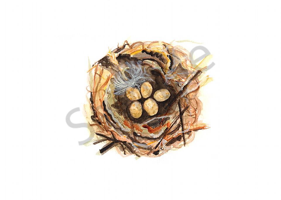 Bird Nest Study #5 Art | Digital Arts Studio / Fine Art Marketplace