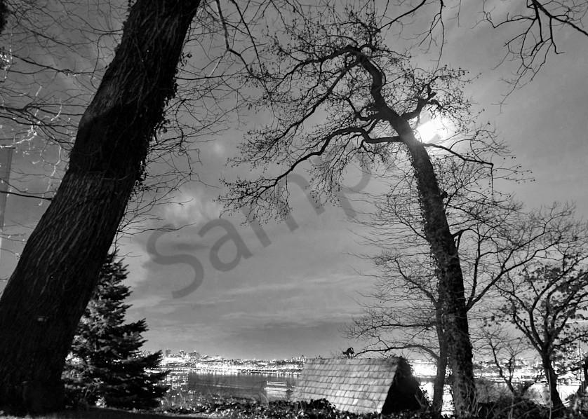 Winter Moon Art | ARTHOUSEarts