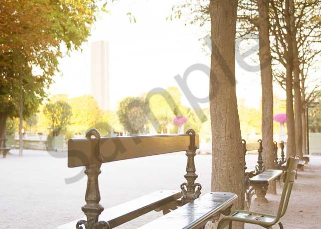 Bench In Jardin Du Luxembourg Art | AngsanaSeeds Photography