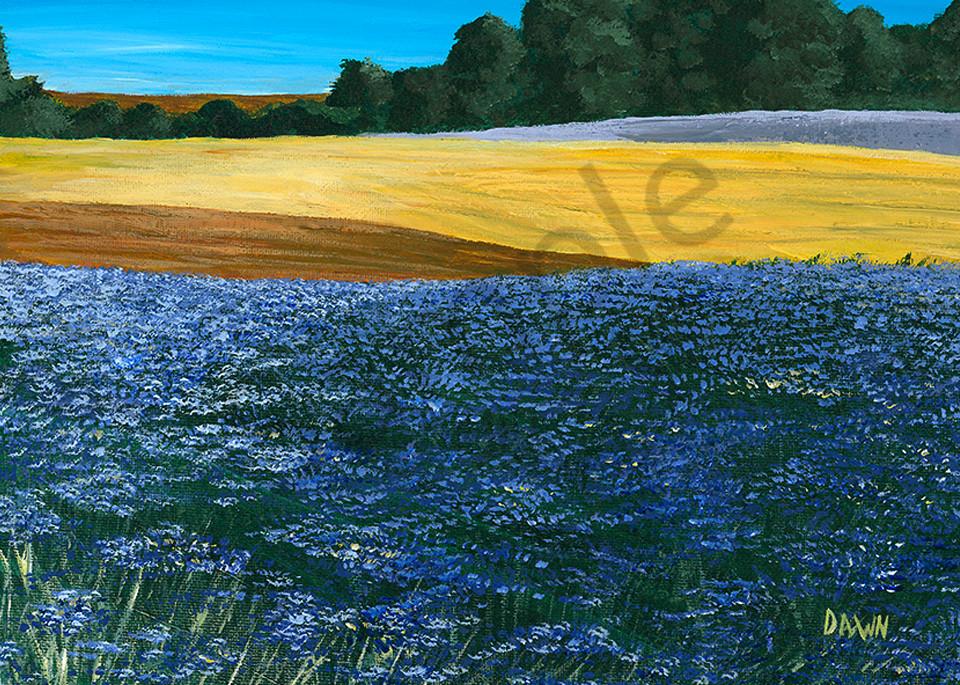 Wildflower Fields Art   Digital Arts Studio / Fine Art Marketplace