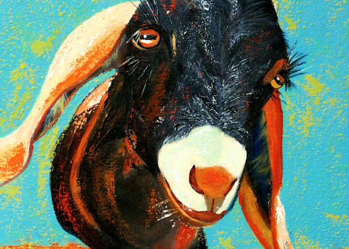 Bishop the Goat