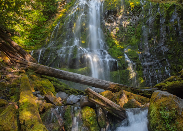 Proxy Falls and Stream Photo for sale Barb Gonzalez Photography