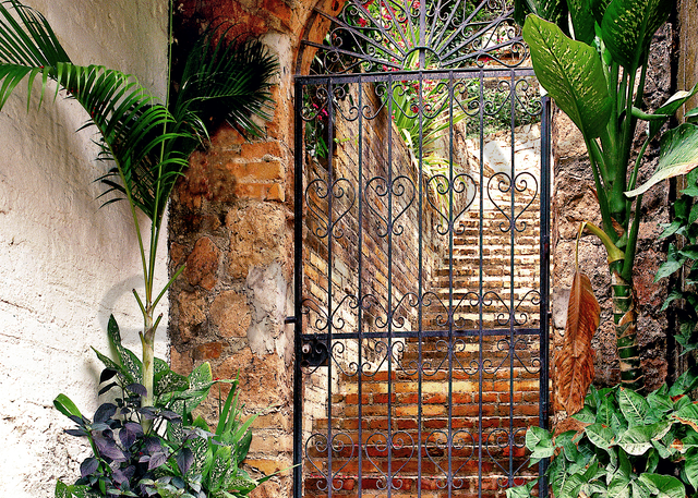 Gate And Stairway Photography Art   Images by Louis Cantillo