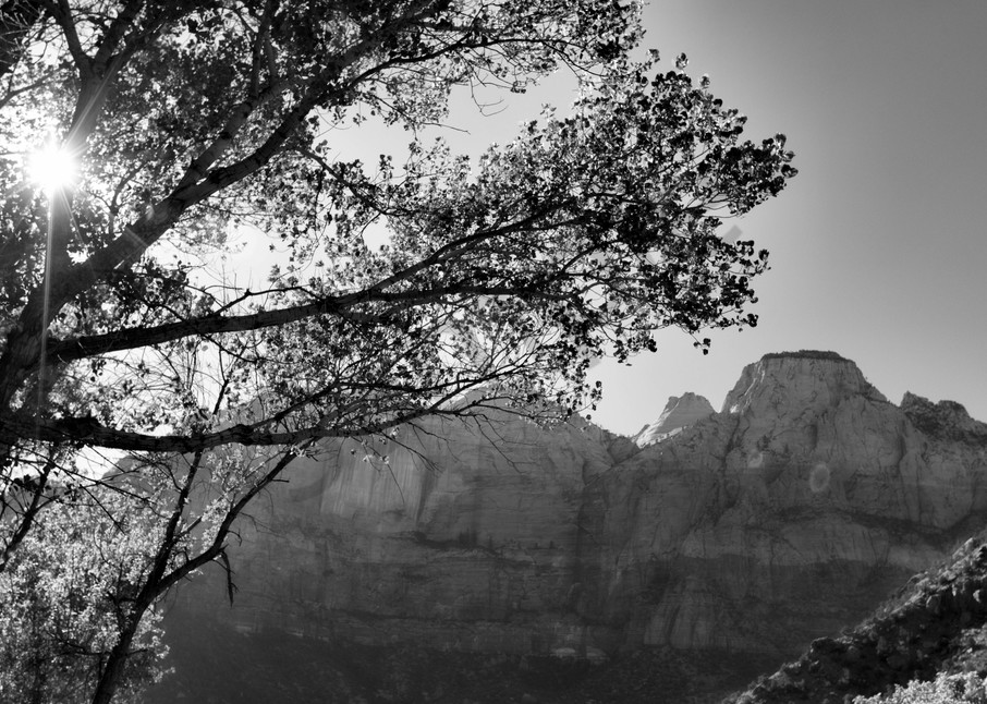 Peek Photography Art   Beth Houts Photography