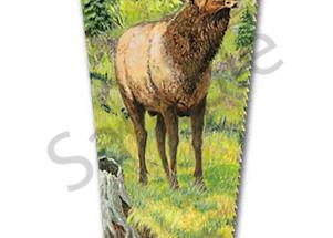 """Bull Elk Creek"" fine art print by Sue Zabel, Artistic Memories."
