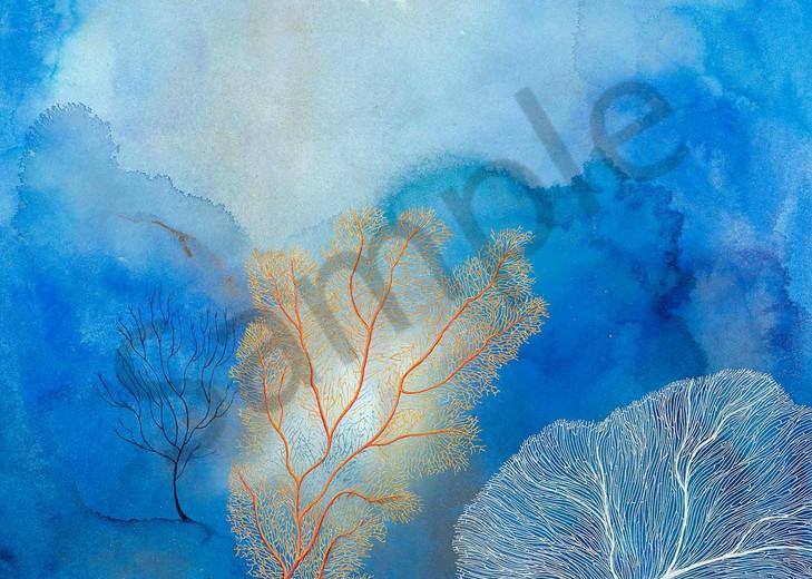 Deep Coral Reef 3.