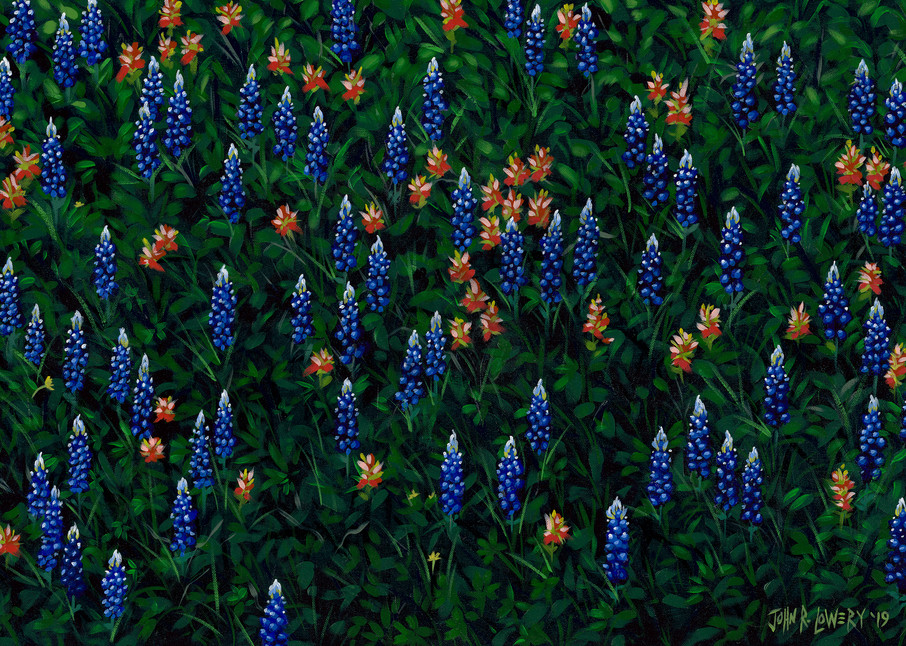 Texas wildflower painting