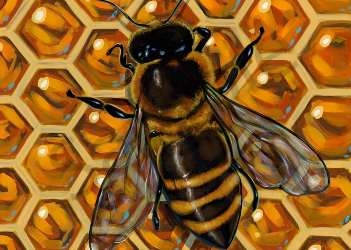 Honey bee on honeycomb painting
