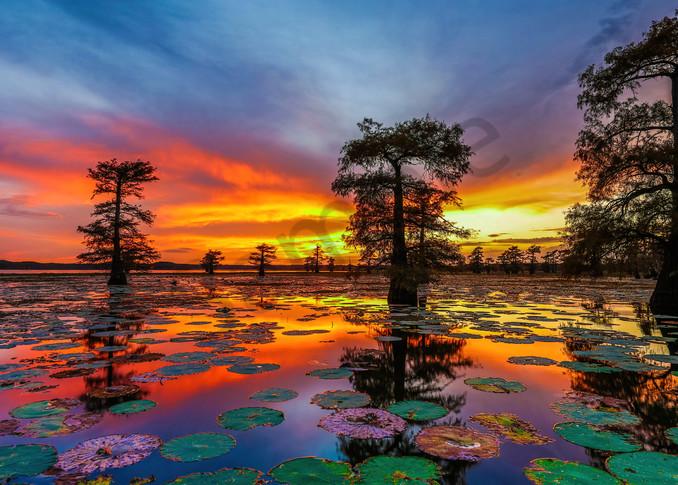 Caddo Lake Sunset Photography Art | John Martell Photography