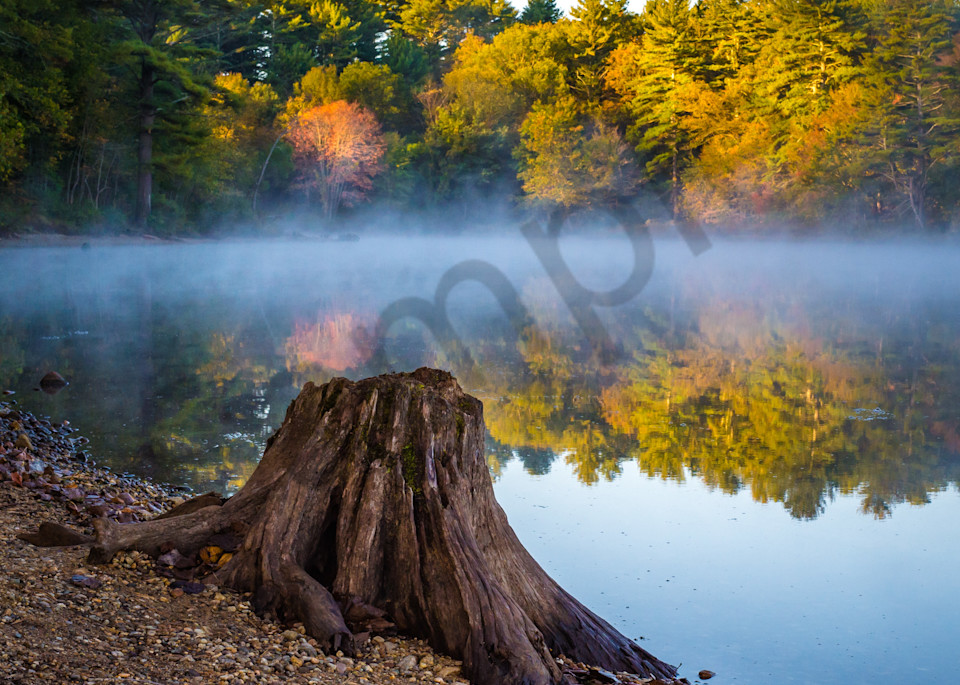 Autumn Morning Photography Art | Kim Bova Photography