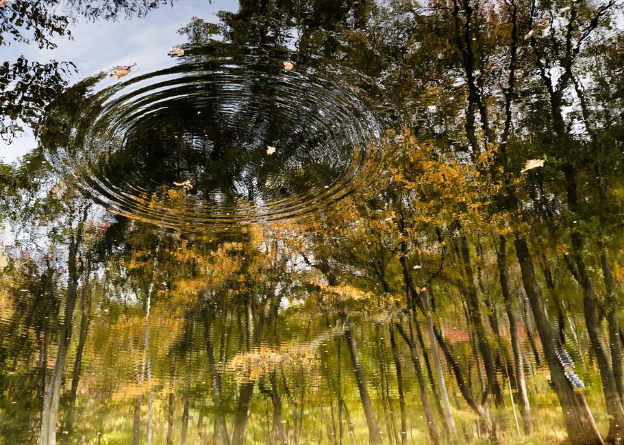 Reflections1 Photography Art | Kim Bova Photography