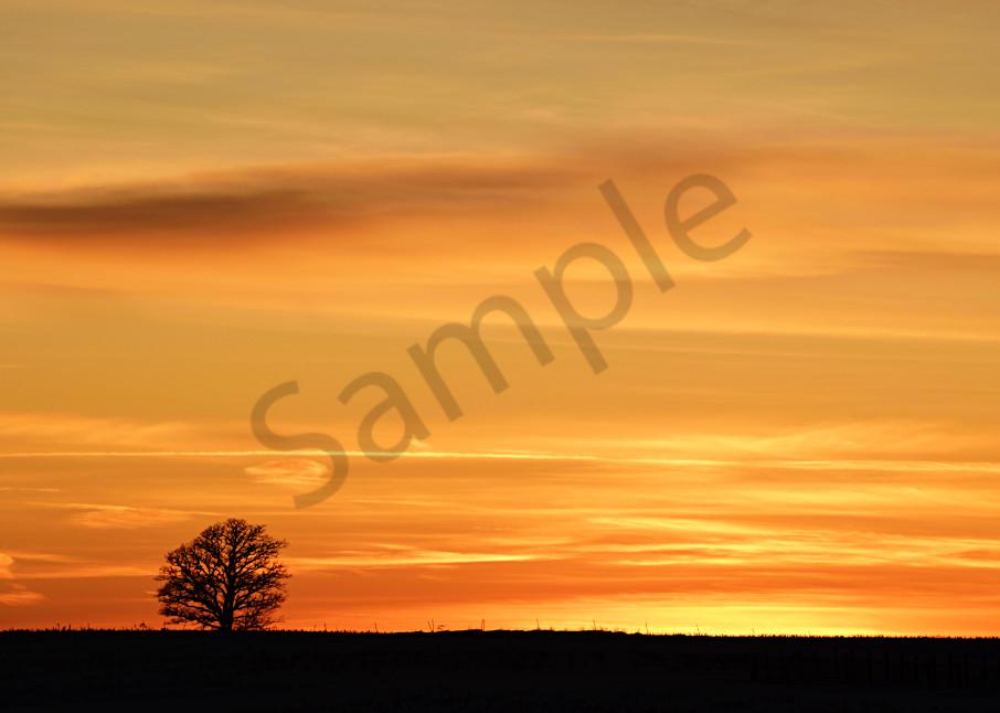 Winter Sunset Photography Art | LHR Images