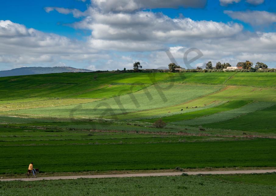 Riding through the green fields
