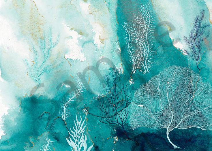 Coral Reef 10