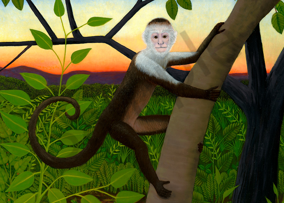 trozzo-Capuchin-monkey