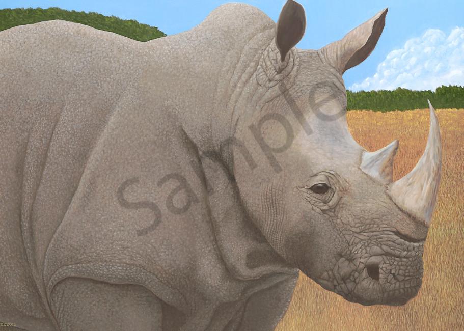 trozzo-rhino
