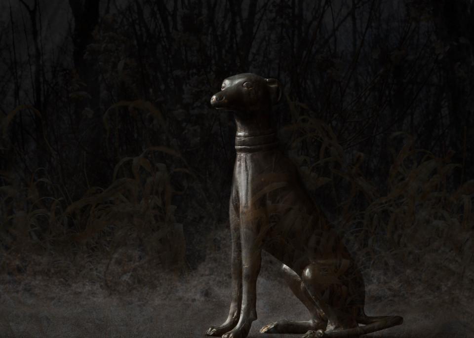Dark Days Photography Art | Kim Bova Photography