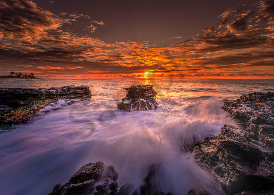 Sunshine Sea   Df020 Art   Pictures Plus
