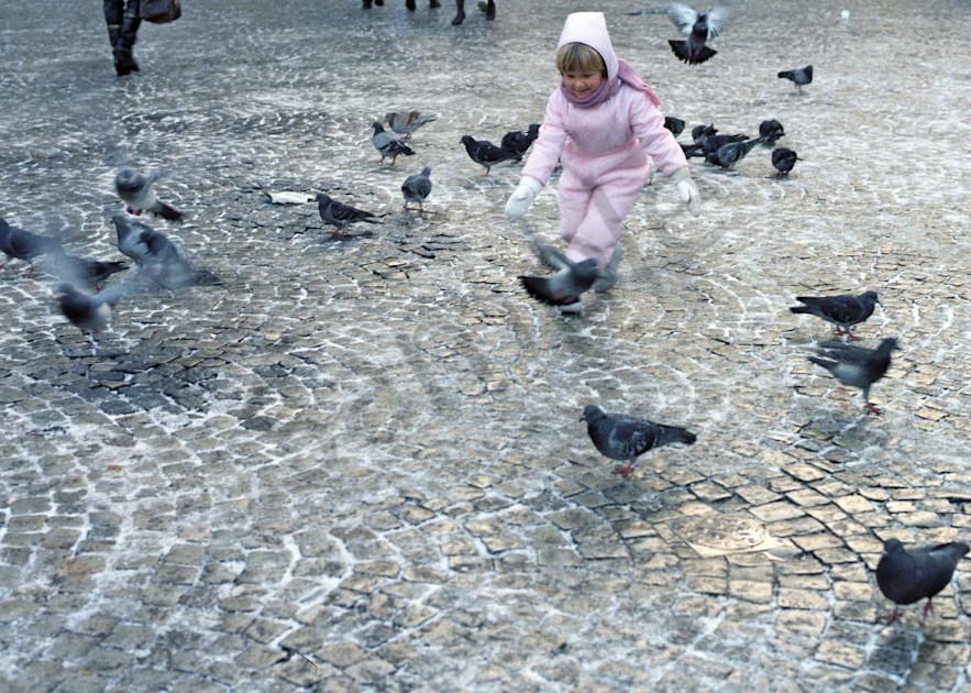 St. Mark's Square, children, pigeons