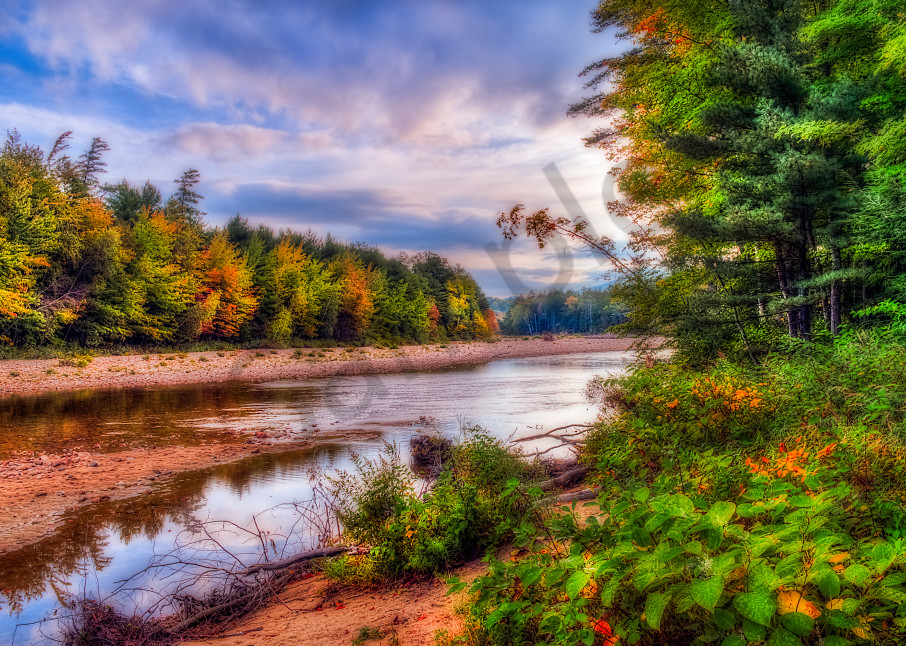 Fall foliage along Saco River