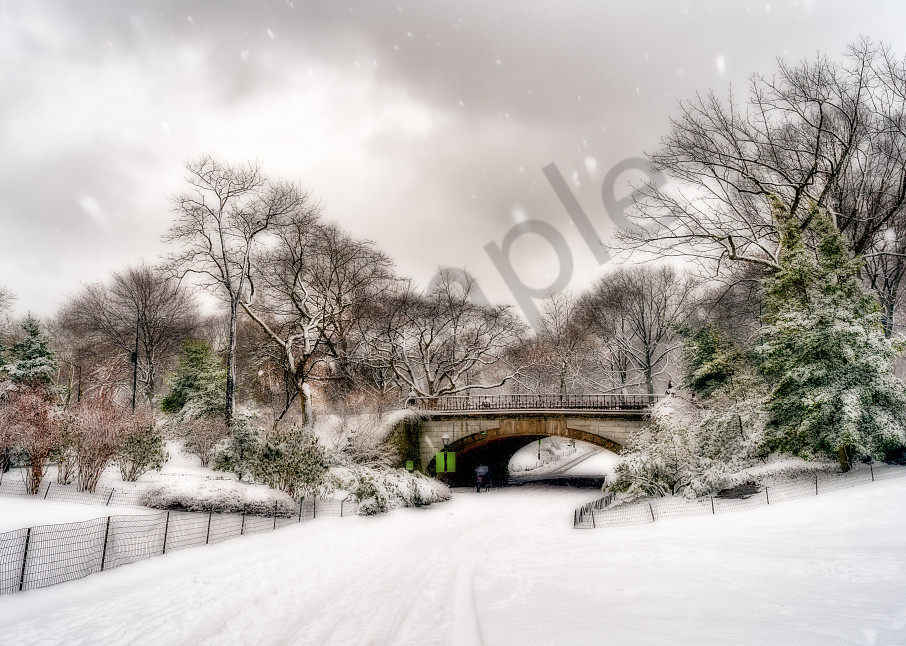 Snow falling on bridge in Central Park