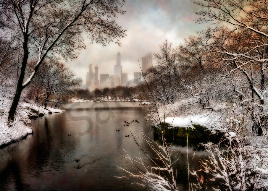 Winter scene in New York's Central Park