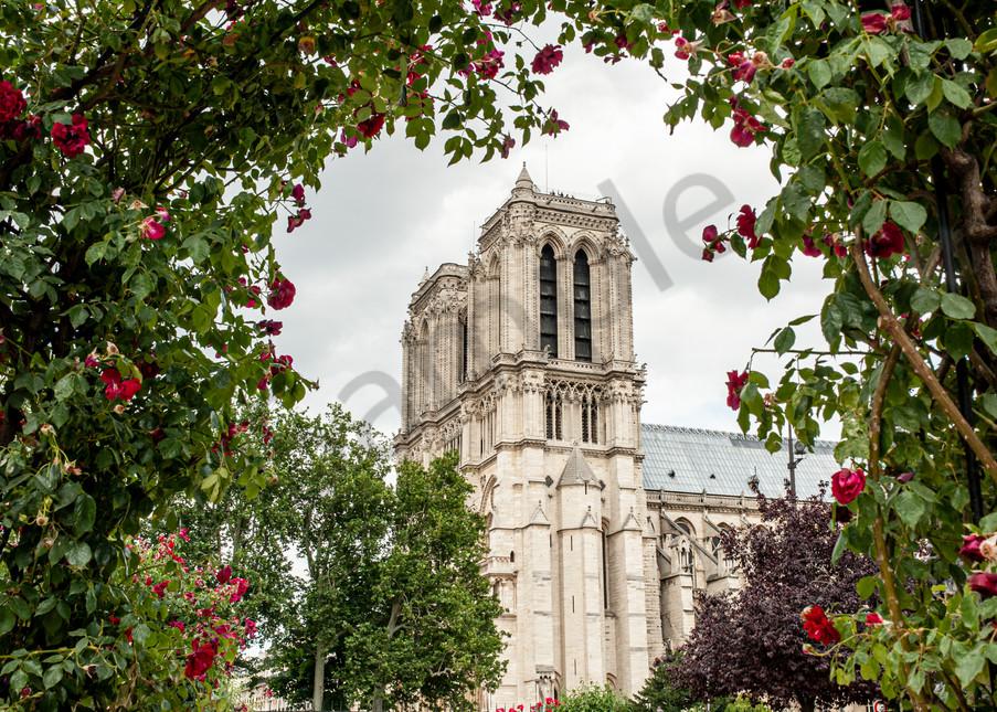 Notre Dame Photography Art   Kim Bova Photography